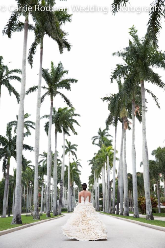 Suzie Turner_Royal Palm Way